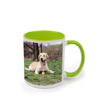 Mug Green Coloured 325ml incl Delivery